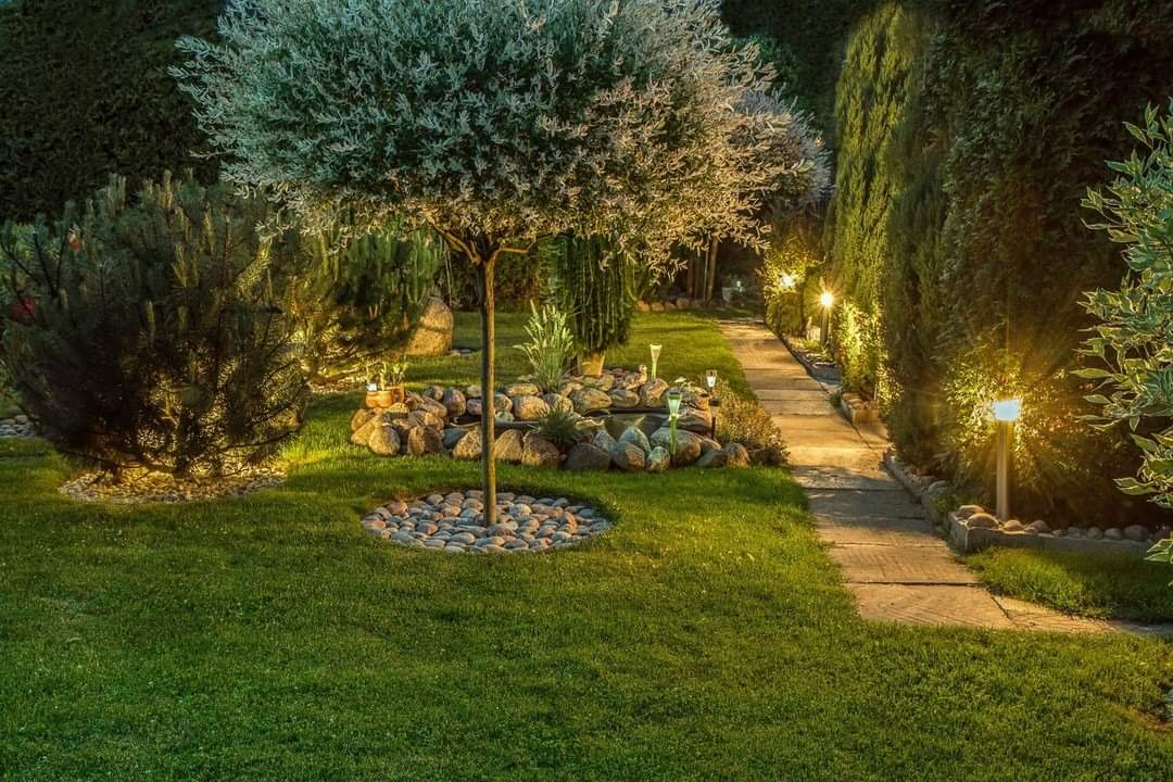 how-can-lighting-transform-your-yard